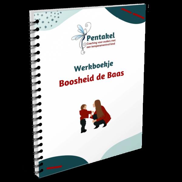 boosheid de baas werkboek